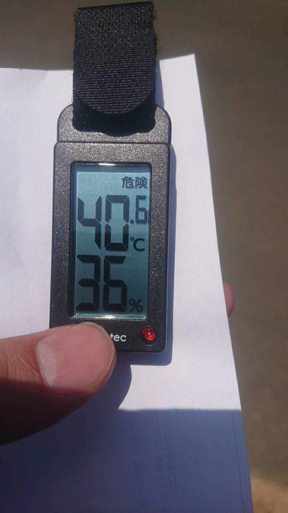 熱中症計実測値