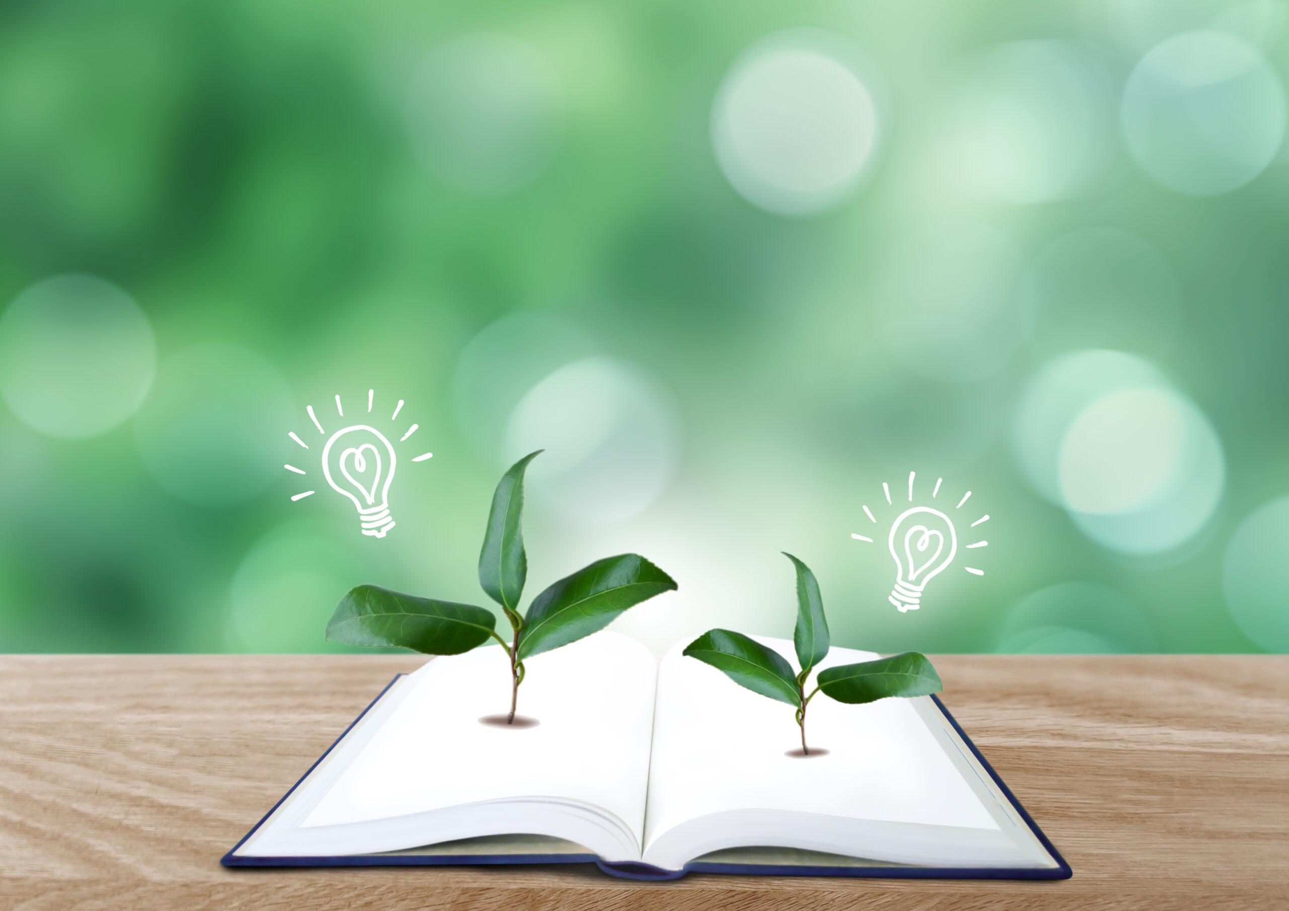 環境とアイデア
