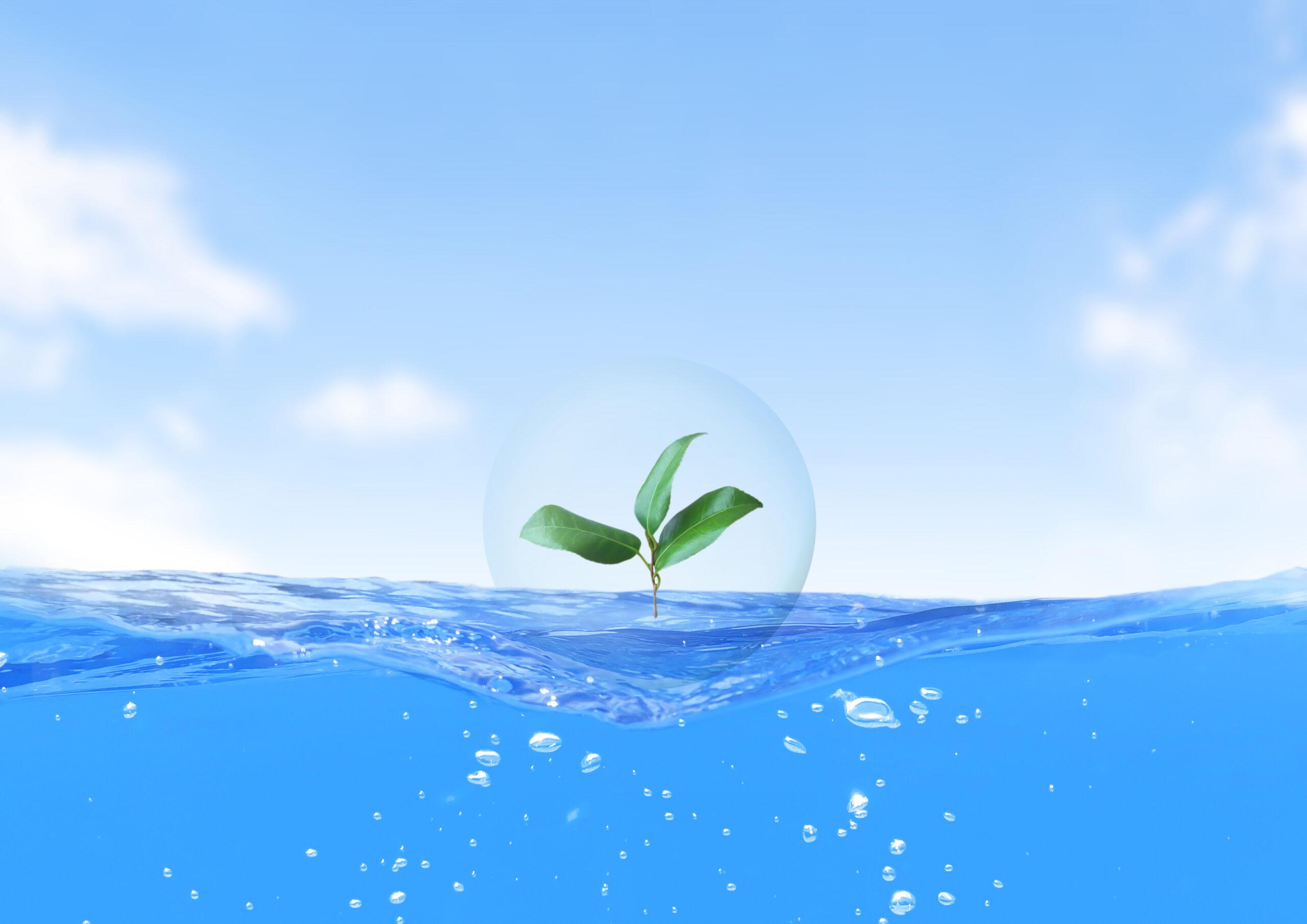 水セキュリティ